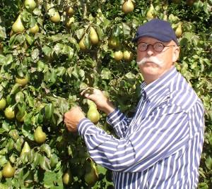 Fruitboomspecialist Ton Sandig